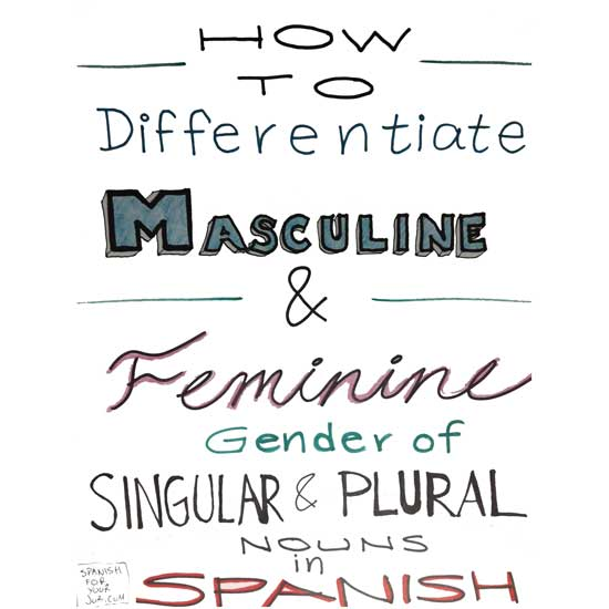 How to know if a word is Masculine or Feminine in Spanish